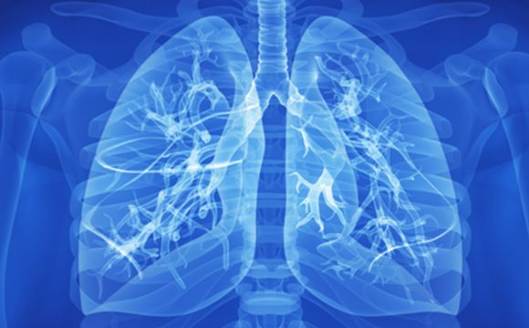 Respiratory and Pulmonary Medicine